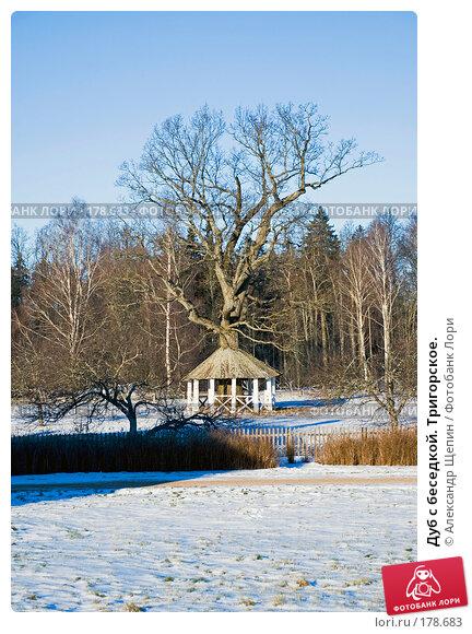 Дуб с беседкой. Тригорское., эксклюзивное фото № 178683, снято 5 января 2008 г. (c) Александр Щепин / Фотобанк Лори