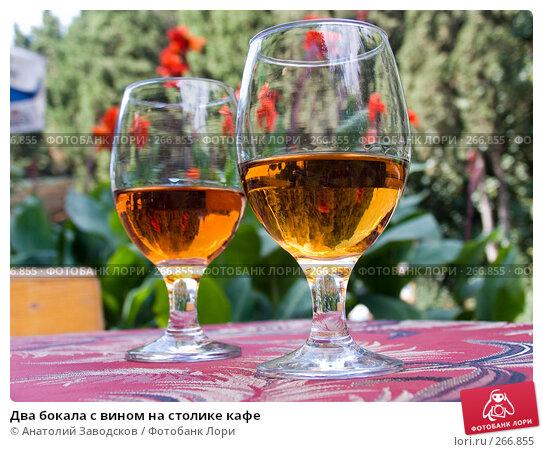 Два бокала с вином на столике кафе, фото № 266855, снято 13 сентября 2006 г. (c) Анатолий Заводсков / Фотобанк Лори