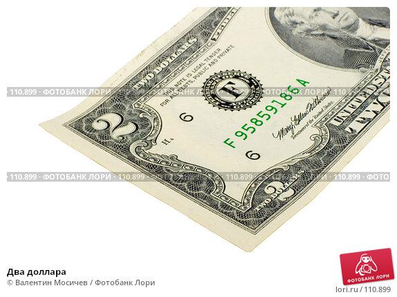 Два доллара, фото № 110899, снято 27 октября 2006 г. (c) Валентин Мосичев / Фотобанк Лори