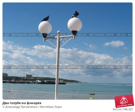 Купить «Два голубя на фонарях», фото № 146327, снято 10 сентября 2007 г. (c) Александр Литовченко / Фотобанк Лори