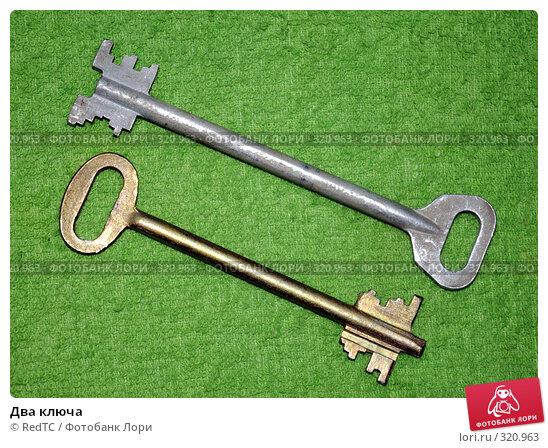 Два ключа, фото № 320963, снято 12 июня 2008 г. (c) RedTC / Фотобанк Лори
