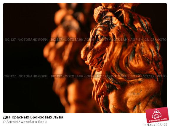 Два Красных Бронзовых Льва, фото № 102127, снято 25 июля 2017 г. (c) Astroid / Фотобанк Лори