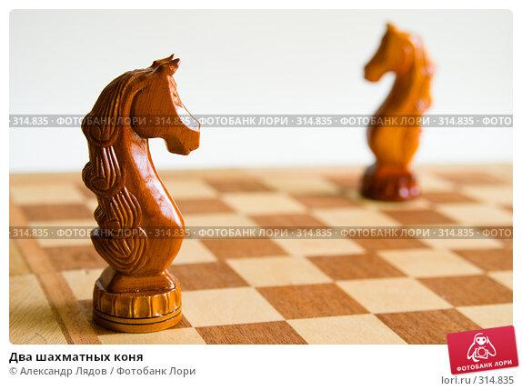 Два шахматных коня, фото № 314835, снято 8 июня 2008 г. (c) Александр Лядов / Фотобанк Лори