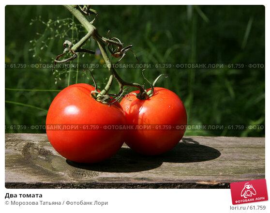 Два томата, фото № 61759, снято 18 июня 2007 г. (c) Морозова Татьяна / Фотобанк Лори