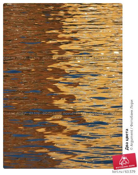 Два цвета, фото № 63579, снято 12 октября 2006 г. (c) Argument / Фотобанк Лори