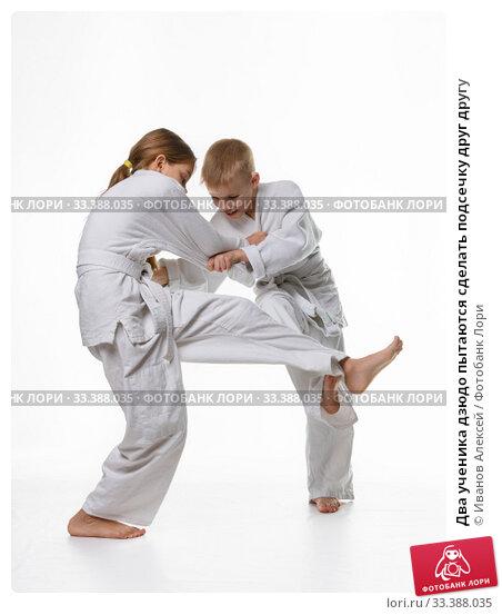 Купить «Два ученика дзюдо пытаются сделать подсечку друг другу», фото № 33388035, снято 21 февраля 2020 г. (c) Иванов Алексей / Фотобанк Лори