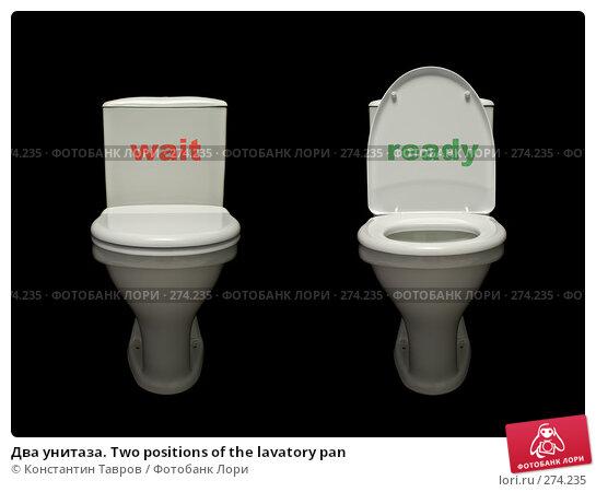 Купить «Два унитаза. Two positions of the lavatory pan», фото № 274235, снято 23 ноября 2007 г. (c) Константин Тавров / Фотобанк Лори