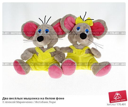 Купить «Два весёлых мышонка на белом фоне», фото № 170491, снято 3 января 2008 г. (c) Алексей Маринченко / Фотобанк Лори