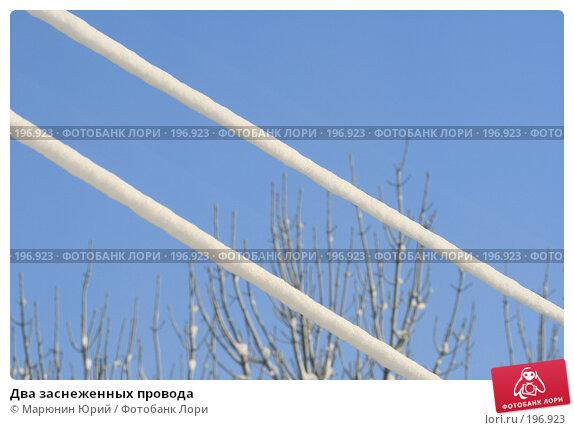 Два заснеженных провода, фото № 196923, снято 25 января 2008 г. (c) Марюнин Юрий / Фотобанк Лори