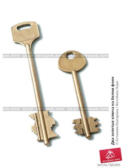 Два золотых ключа на белом фоне, фото № 323631, снято 23 апреля 2008 г. (c) Останина Екатерина / Фотобанк Лори