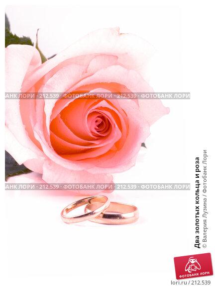 Два золотых кольца и роза, фото № 212539, снято 1 марта 2008 г. (c) Валерия Потапова / Фотобанк Лори
