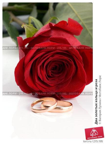Два золотых кольца и роза, фото № 215195, снято 1 марта 2008 г. (c) Валерия Потапова / Фотобанк Лори