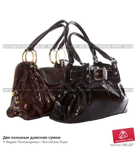 Две кожаные дамские сумки, фото № 205207, снято 9 февраля 2008 г. (c) Вадим Пономаренко / Фотобанк Лори