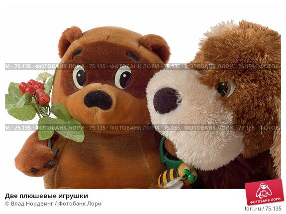 Две плюшевые игрушки, фото № 75135, снято 9 августа 2007 г. (c) Влад Нордвинг / Фотобанк Лори