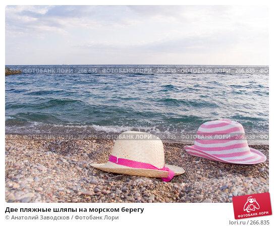 Купить «Две пляжные шляпы на морском берегу», фото № 266835, снято 14 сентября 2006 г. (c) Анатолий Заводсков / Фотобанк Лори