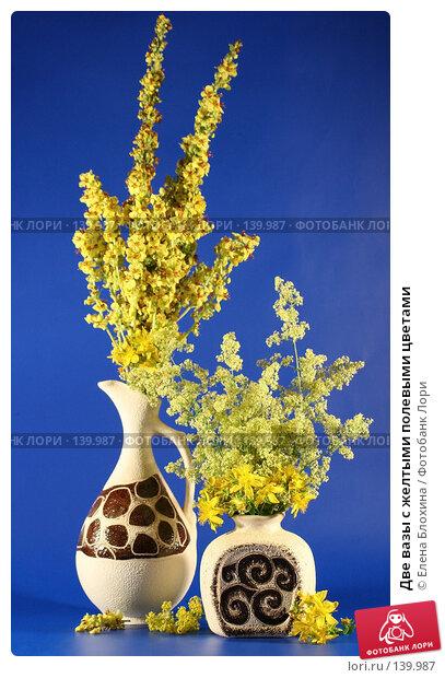 Две вазы с желтыми полевыми цветами, фото № 139987, снято 28 июня 2007 г. (c) Елена Блохина / Фотобанк Лори
