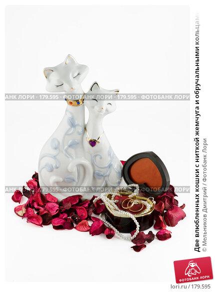 Две влюбленных кошки с ниткой жемчуга и обручальными кольцами, фото № 179595, снято 17 января 2008 г. (c) Мельников Дмитрий / Фотобанк Лори
