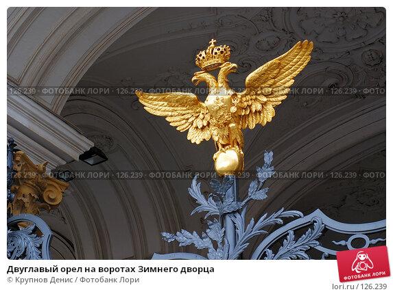 Купить «Двуглавый орел на воротах Зимнего дворца», фото № 126239, снято 29 июля 2007 г. (c) Крупнов Денис / Фотобанк Лори