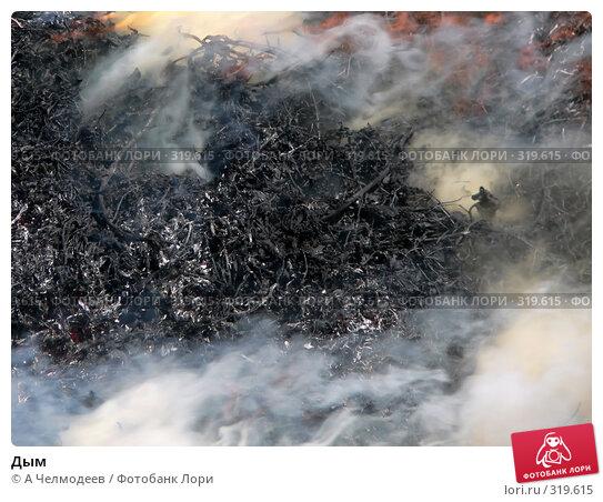 Купить «Дым», фото № 319615, снято 12 июля 2006 г. (c) A Челмодеев / Фотобанк Лори