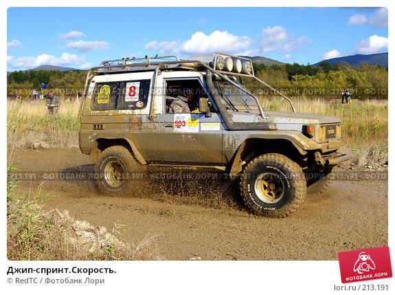 Джип-спринт.Скорость., фото № 213191, снято 29 сентября 2007 г. (c) RedTC / Фотобанк Лори