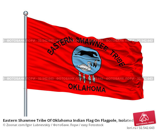 Купить «Eastern Shawnee Tribe Of Oklahoma Indian Flag On Flagpole, Isolated On White Background», фото № 32542643, снято 10 декабря 2019 г. (c) easy Fotostock / Фотобанк Лори