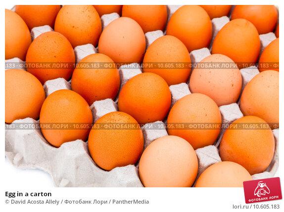 Egg in a carton. Стоковое фото, фотограф David Acosta Allely / PantherMedia / Фотобанк Лори