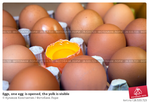 Купить «Eggs, one egg  is opened, the yolk is visible», фото № 28533723, снято 19 марта 2016 г. (c) Куликов Константин / Фотобанк Лори