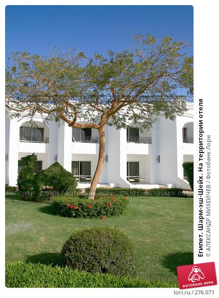 Египет. Шарм-эш-Шейх. На территории отеля, фото № 276071, снято 18 февраля 2008 г. (c) АЛЕКСАНДР МИХЕИЧЕВ / Фотобанк Лори