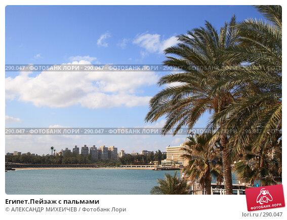 Египет.Пейзаж с пальмами, фото № 290047, снято 26 февраля 2008 г. (c) АЛЕКСАНДР МИХЕИЧЕВ / Фотобанк Лори