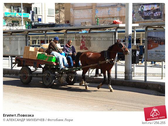 Египет.Повозка, фото № 256255, снято 26 февраля 2008 г. (c) АЛЕКСАНДР МИХЕИЧЕВ / Фотобанк Лори