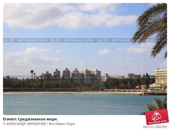 Египет.Средиземное море., фото № 302931, снято 26 февраля 2008 г. (c) АЛЕКСАНДР МИХЕИЧЕВ / Фотобанк Лори
