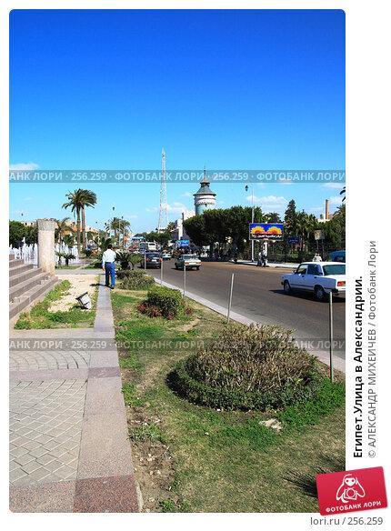 Египет.Улица в Александрии., фото № 256259, снято 26 февраля 2008 г. (c) АЛЕКСАНДР МИХЕИЧЕВ / Фотобанк Лори