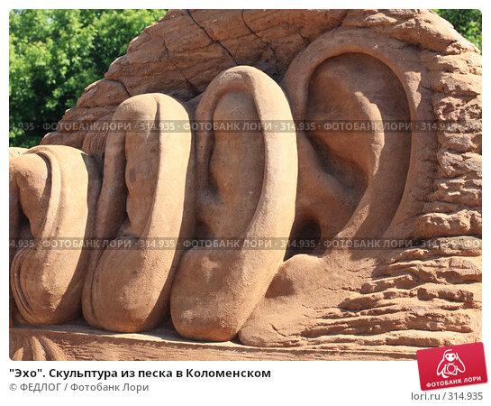 """""""Эхо"""". Скульптура из песка в Коломенском, фото № 314935, снято 8 июня 2008 г. (c) ФЕДЛОГ.РФ / Фотобанк Лори"""