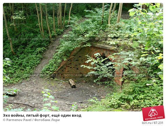 Эхо войны, пятый форт, ещё один вход, фото № 87231, снято 7 сентября 2007 г. (c) Parmenov Pavel / Фотобанк Лори