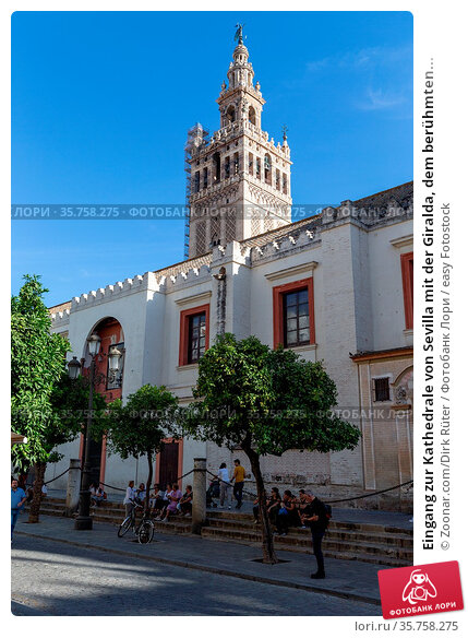 Eingang zur Kathedrale von Sevilla mit der Giralda, dem berühmten... Стоковое фото, фотограф Zoonar.com/Dirk Rüter / easy Fotostock / Фотобанк Лори