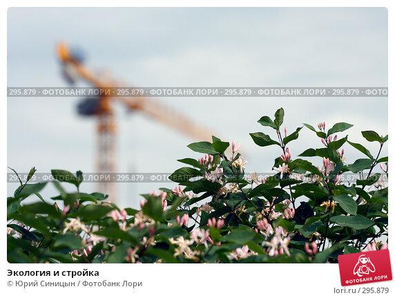 Купить «Экология и стройка», фото № 295879, снято 20 мая 2008 г. (c) Юрий Синицын / Фотобанк Лори