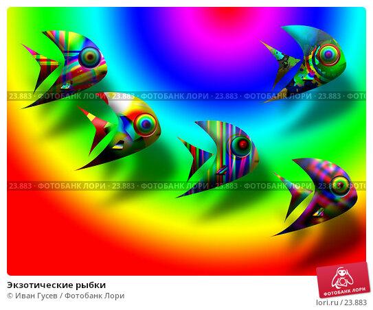 Экзотические рыбки, иллюстрация № 23883 (c) Иван Гусев / Фотобанк Лори