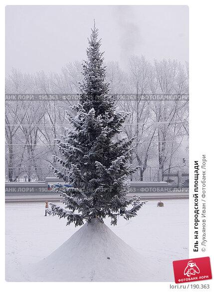 Ель на городской площади, фото № 190363, снято 8 декабря 2007 г. (c) Лукьянов Иван / Фотобанк Лори