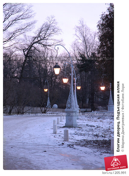 Елагин дворец. Подъездная аллея, фото № 205991, снято 16 февраля 2008 г. (c) Марина Дмитриевых / Фотобанк Лори