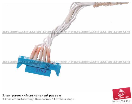 Электрический сигнальный разъем, фото № 38731, снято 5 октября 2005 г. (c) Саломатов Александр Николаевич / Фотобанк Лори