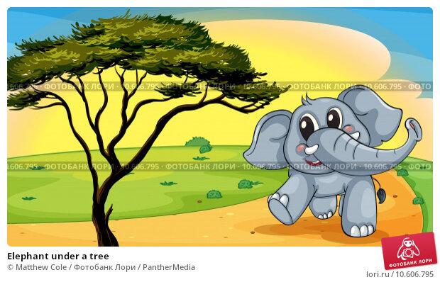 Elephant under a tree. Стоковая иллюстрация, иллюстратор Matthew Cole / PantherMedia / Фотобанк Лори