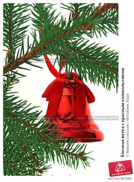 Ёлочная ветка с красным колокольчиком, фото № 87039, снято 21 сентября 2007 г. (c) Максим Соколов / Фотобанк Лори