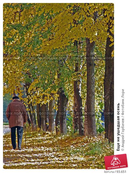 Еще не ушедшая осень, фото № 93651, снято 25 сентября 2007 г. (c) Андрей Горбачев / Фотобанк Лори
