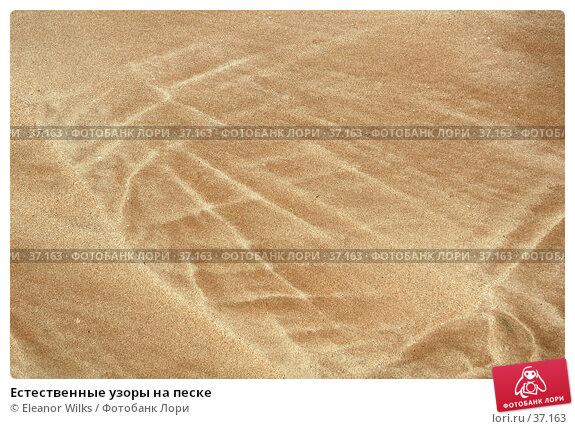 Естественные узоры на песке, фото № 37163, снято 24 мая 2007 г. (c) Eleanor Wilks / Фотобанк Лори