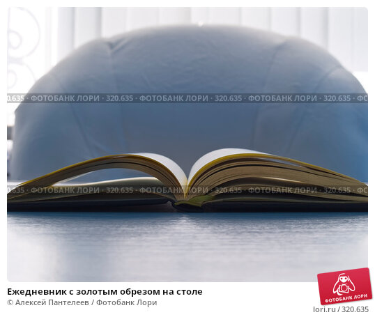 Ежедневник с золотым обрезом на столе, фото № 320635, снято 11 июня 2008 г. (c) Алексей Пантелеев / Фотобанк Лори