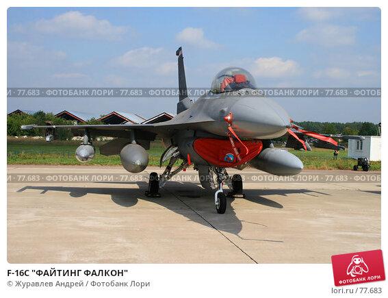 "F-16C ""ФАЙТИНГ ФАЛКОН"", эксклюзивное фото № 77683, снято 25 августа 2007 г. (c) Журавлев Андрей / Фотобанк Лори"