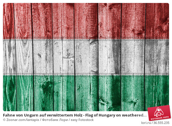 Fahne von Ungarn auf verwittertem Holz - Flag of Hungary on weathered... Стоковое фото, фотограф Zoonar.com/lantapix / easy Fotostock / Фотобанк Лори