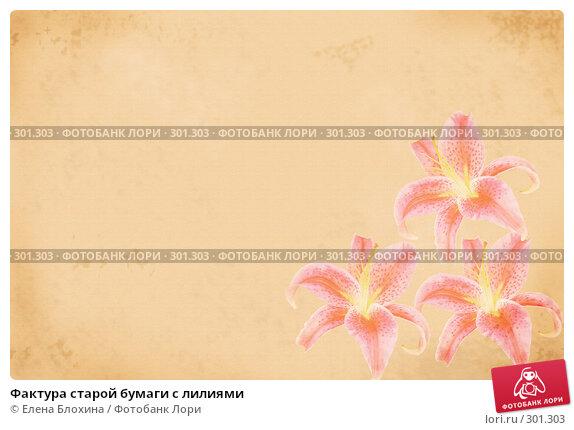 Купить «Фактура старой бумаги с лилиями», фото № 301303, снято 21 марта 2018 г. (c) Елена Блохина / Фотобанк Лори