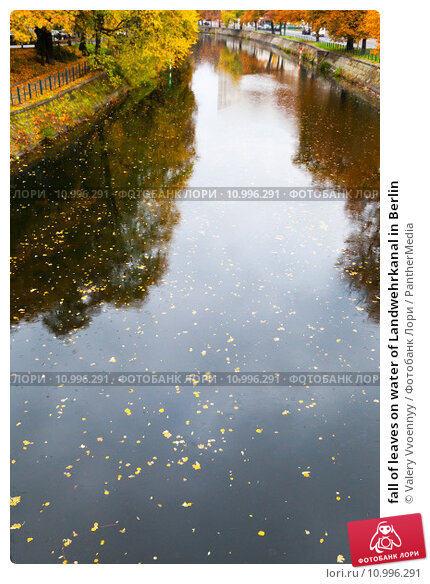 Купить «fall of leaves on water of Landwehrkanal in Berlin», фото № 10996291, снято 20 апреля 2019 г. (c) PantherMedia / Фотобанк Лори