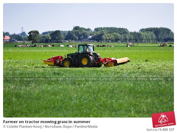 Купить «Farmer on tractor mowing grass in summer», фото № 9499107, снято 22 октября 2018 г. (c) PantherMedia / Фотобанк Лори